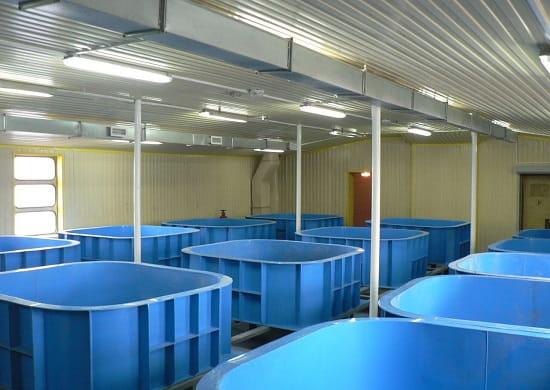 Строительство бассейнов Винница 4